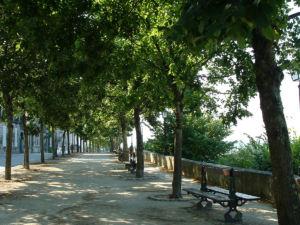 Le Rempart Desaix - © Charente-Tourisme